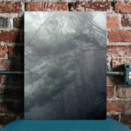 Panel drzewa we mgle dekoracja wnętrz