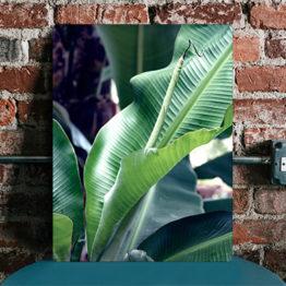 panel design botaniczny
