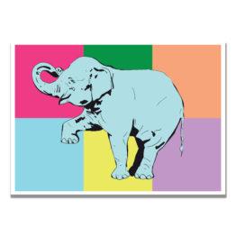 Plakat kolorowy słoń grafika na ścianę - 9804