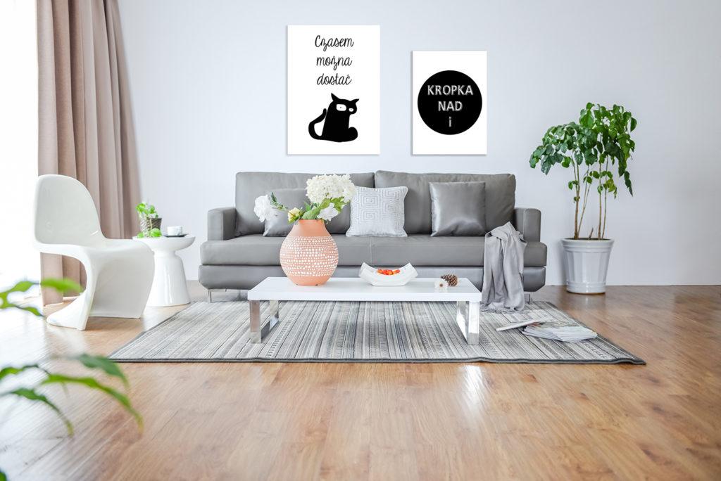 kot w mieszkaniu
