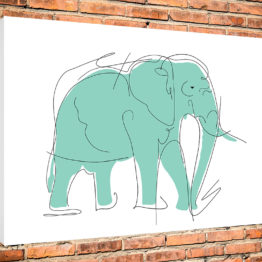 słoń obraz