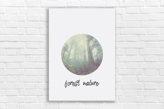 oryginalny plakat natura