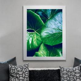 Plakat liście natura dekoracja 2