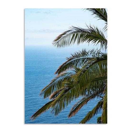 Plakat palma ocean natura