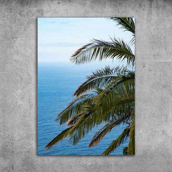 Plakat palma ocean natura 3