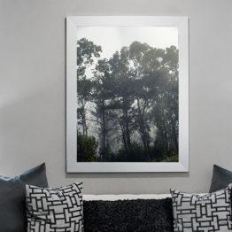 Plakat las mgła natura 2