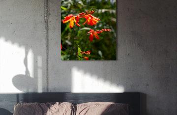 kwiaty obraz na ścianę