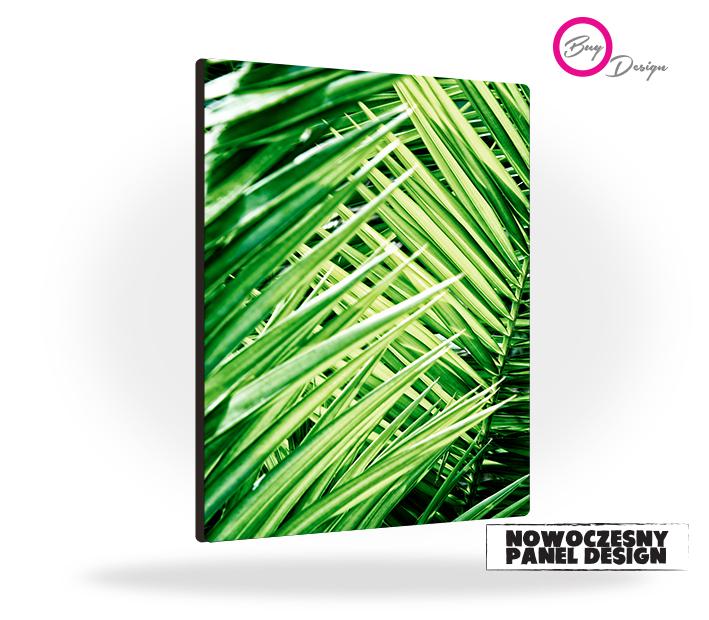 Natura liście palmy plakat panel design - Buy Design
