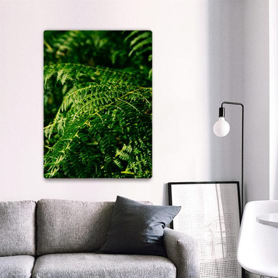 natura liście paproci modny plakat