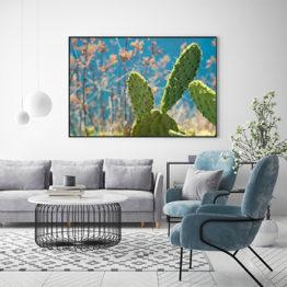 kaktus na pustyni plakat sklep Buy Design