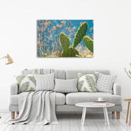 kaktus foto plakat dekoracyjny do mieszkania