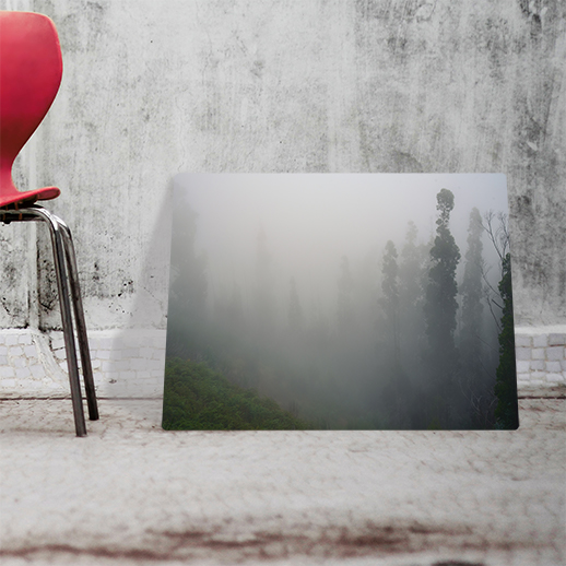 las mgła obraz
