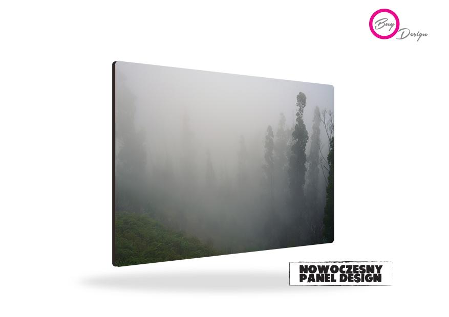 Natura las we mgle obraz panel design
