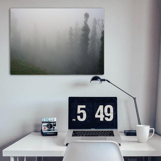 mgła obraz