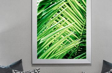 Plakat natura liście palmy - Sklep Buy Design