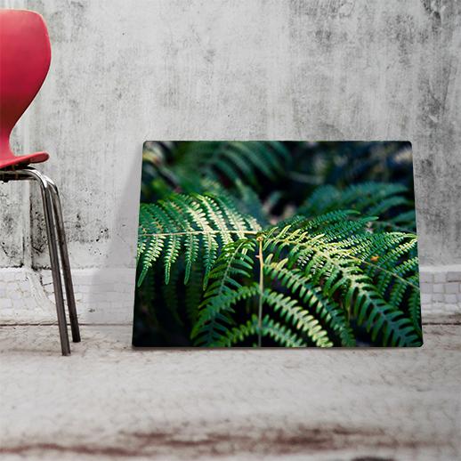 producent obrazów na ścianę Buy Design