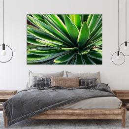 liście natura plakat