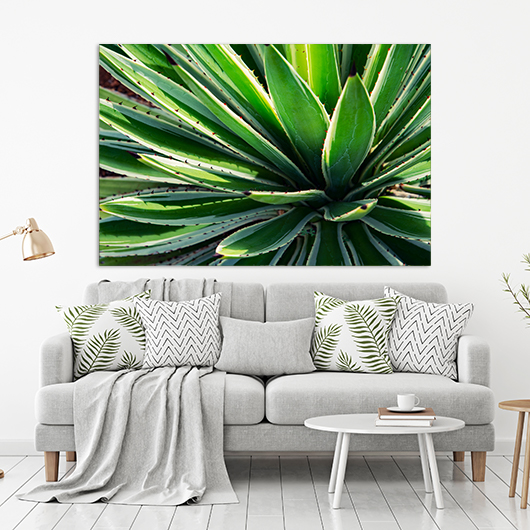 plakat botaniczny do salonu